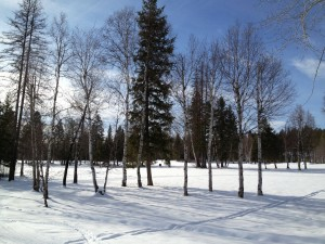 Groomed Trails at Whitefish Lake Golf Course